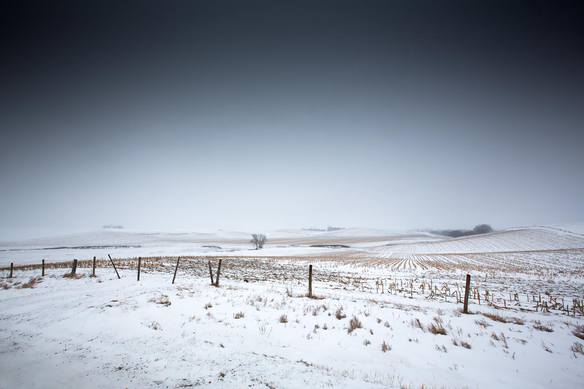 Bleak-prairie-Scott-Gable-field-far