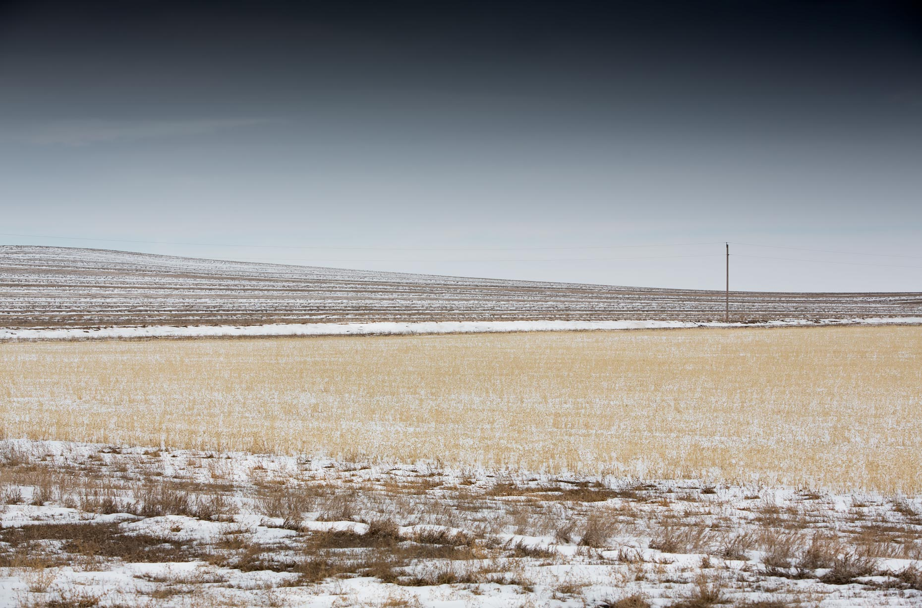 Bleak-prairie-Scott-Gable-field