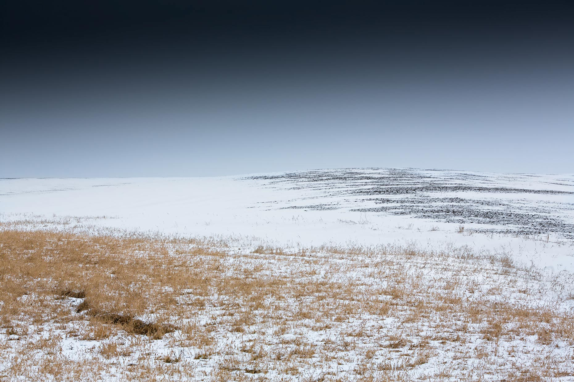 Bleak-prairie-Scott-Gable-pasture