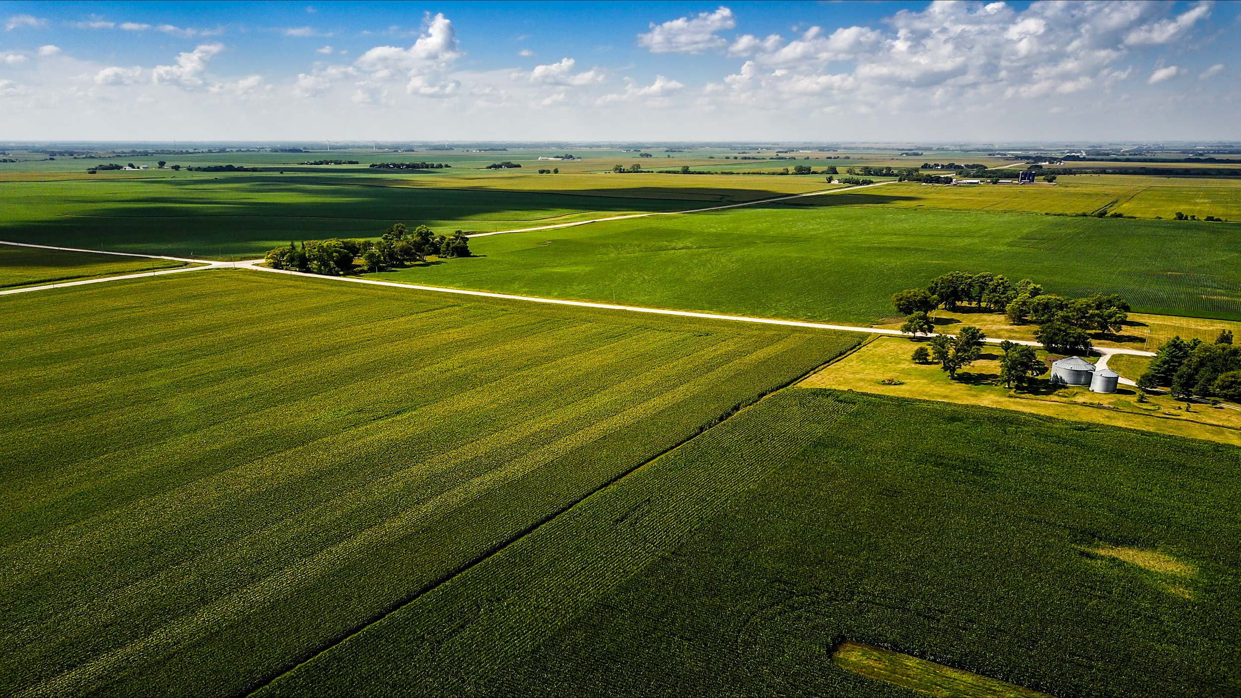 Aerial view of green cornfields in every direction | Scott Gable industrial photographer