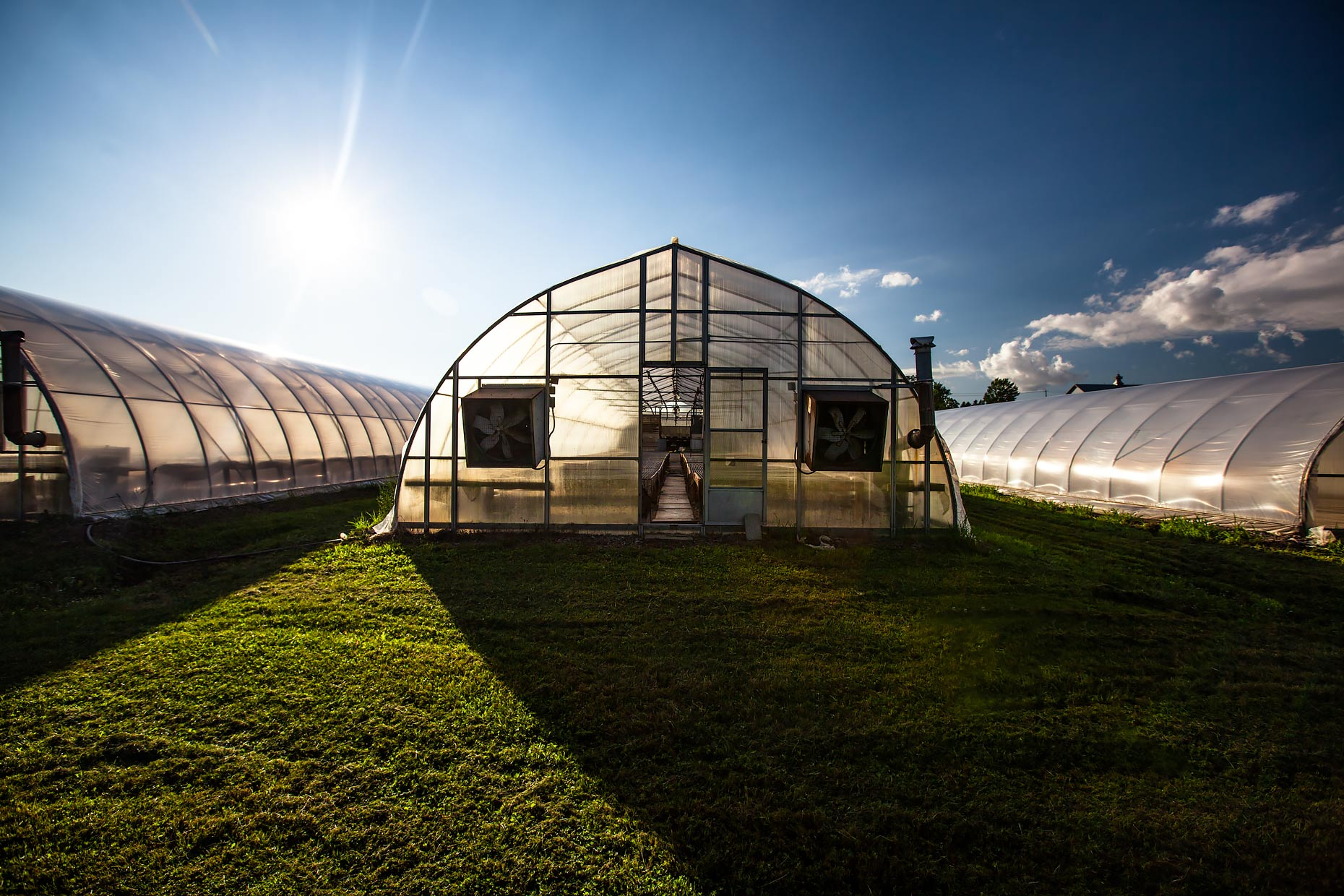 Front view outside several greenhouses in Spring |  Scott Gable industrial photographer