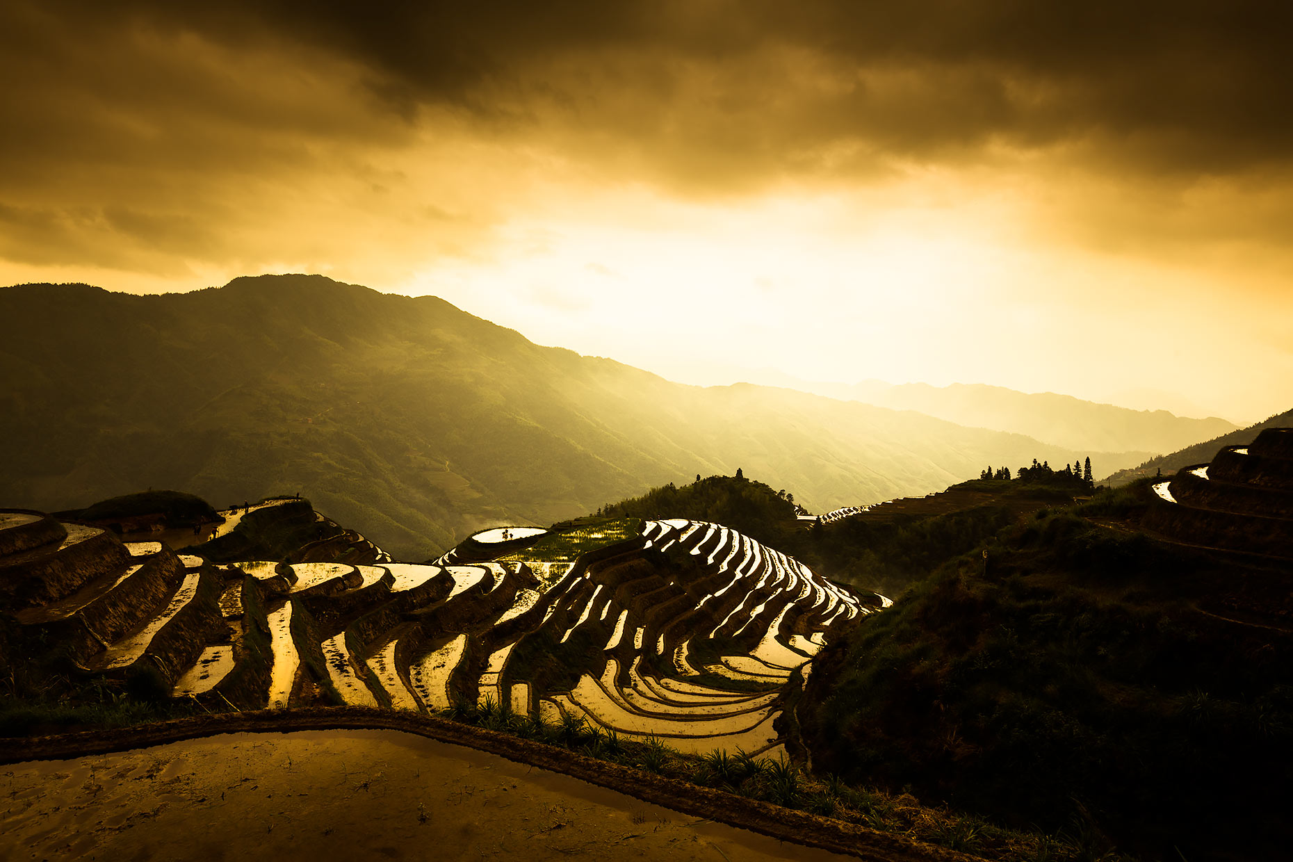 rice terraces southern china | Scott Gable is an advertising and editorial photographer providing photography and video to corporate, industrial, medical and bio-science clients worldwide.