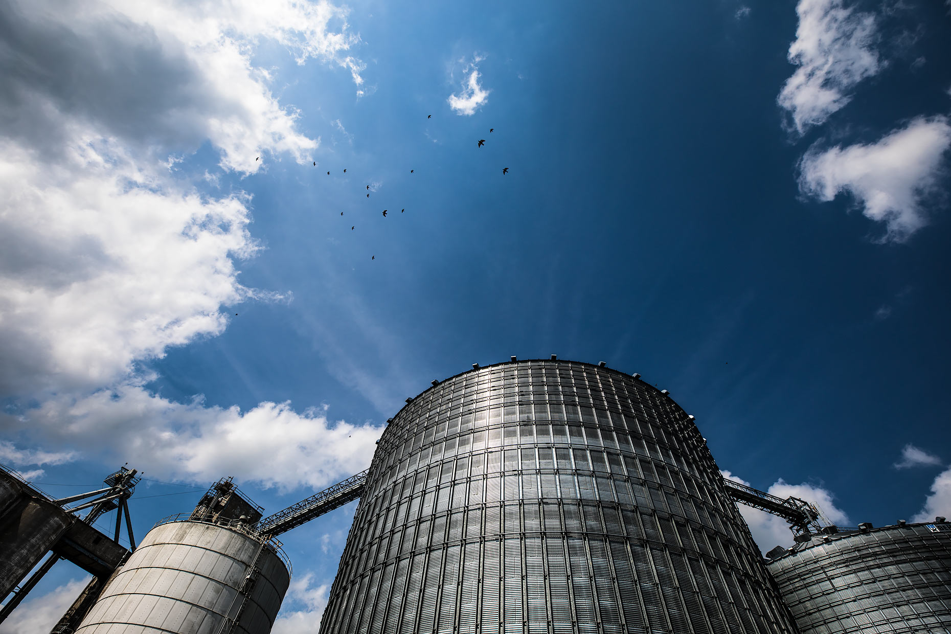 Looking up at a grain silo with blue sky and birds overhead |  Scott Gable industrial photographer