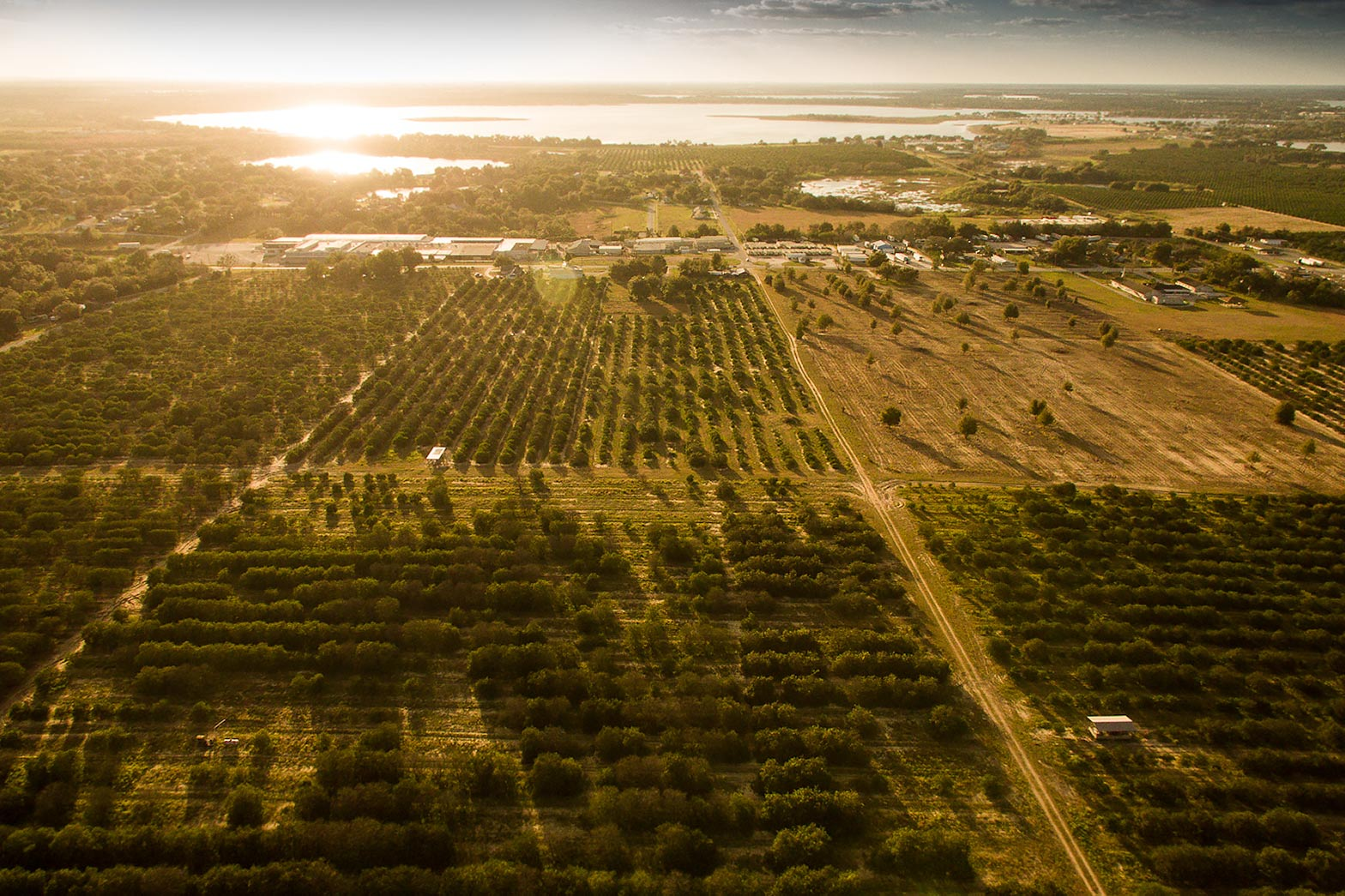 orange grove arial florida | Scott Gable is an advertising and editorial photographer providing photography and video to corporate, industrial, medical and bio-science clients worldwide.