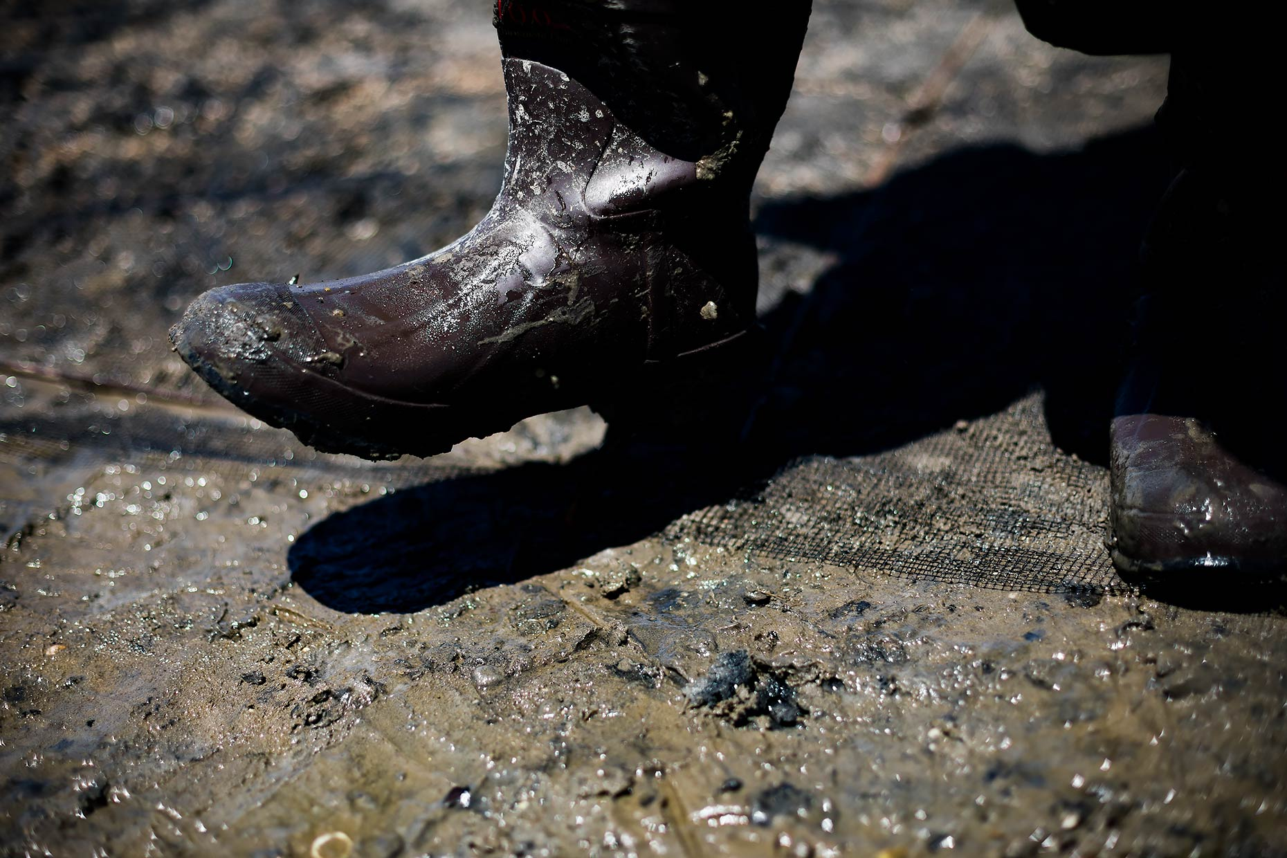 oyster-farmer-boots-in-mud