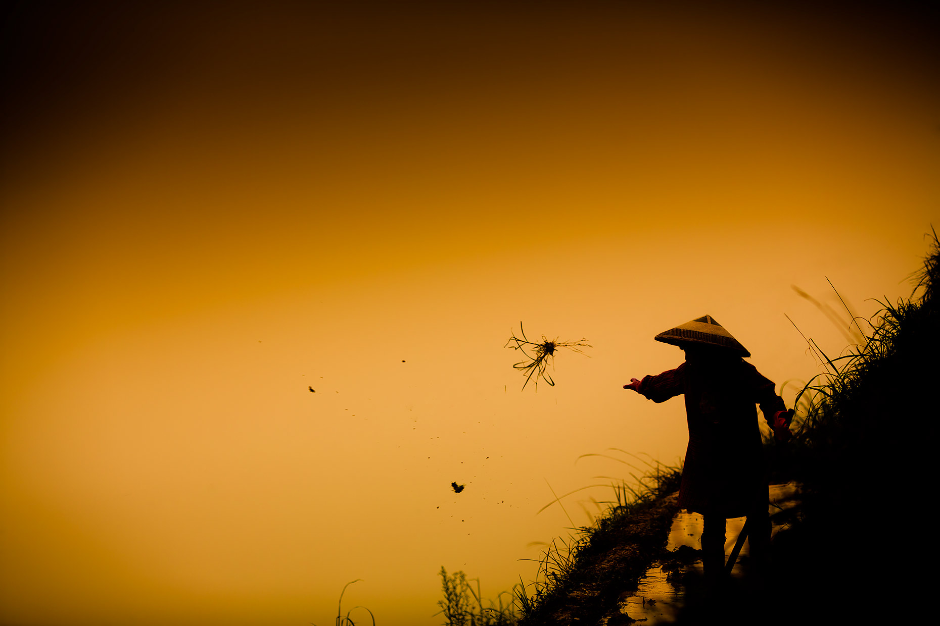 A Guangxi province highlands farmer clears a rice paddy | Scott Gable industrial photographer